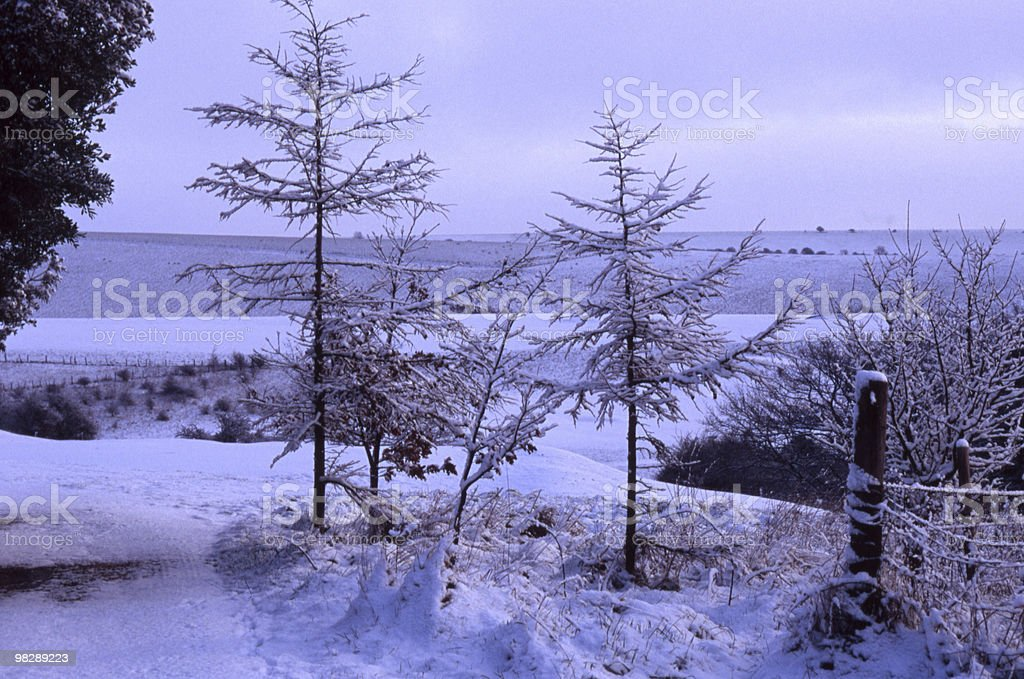Snowy countryside in West Sussex. England royalty-free stock photo