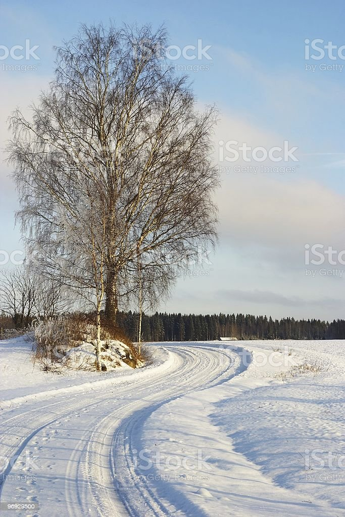Snowy Curve of the Road royalty-free stock photo