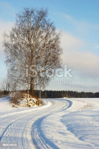 Snowy Curve Of The Road Stock Photo & More Pictures of Birch Tree