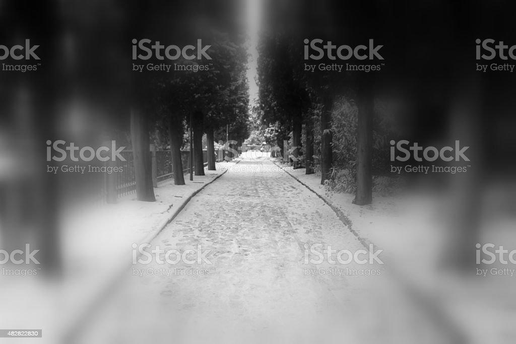 snowy driveway stock photo