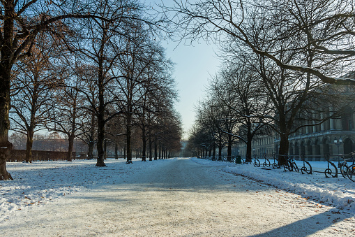 Snowy English Garden Park in Munich