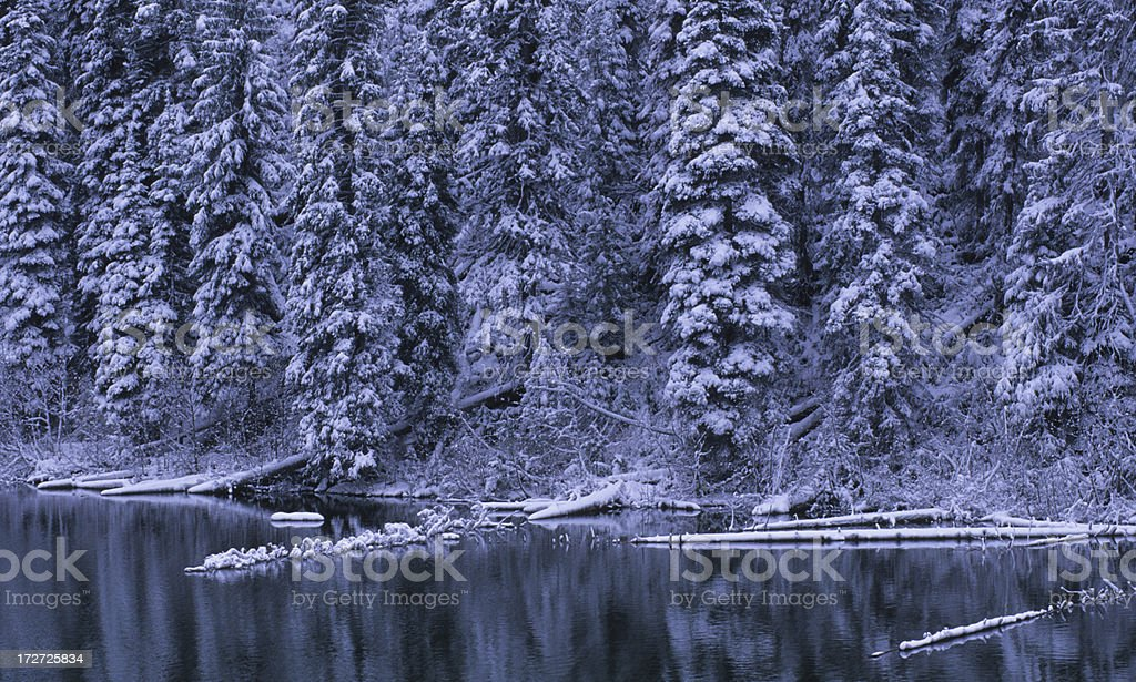 Snowy Forest and Cottonwood Lake stock photo