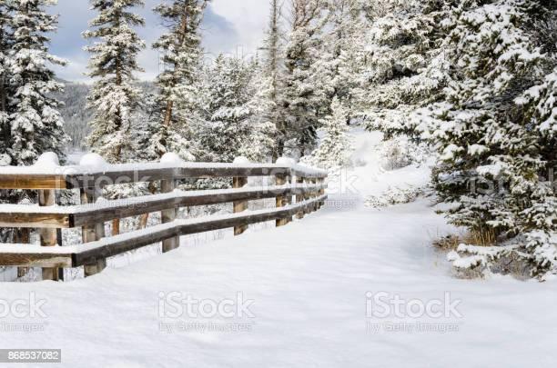 Snowy forest path lined with a fence picture id868537082?b=1&k=6&m=868537082&s=612x612&h=mfqim07m4o6kfnrue1lgixhh93hnfzqhtv8dmfxjozu=