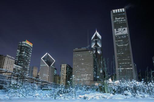 snowy garden against skyline