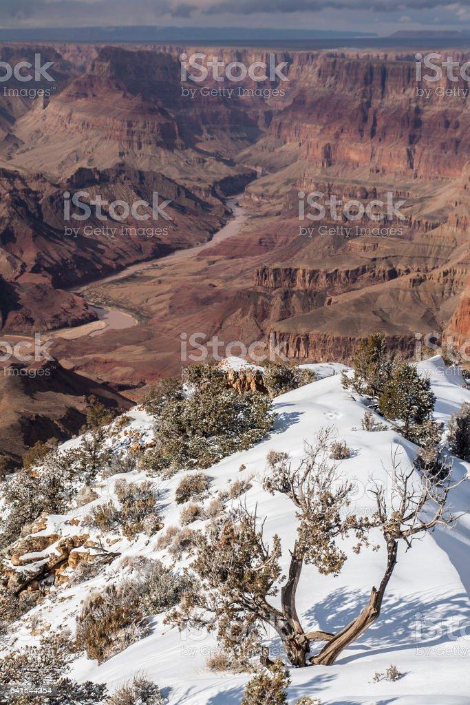 Snowy Grand Canyon foto