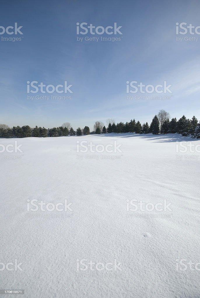 Snowy Ground stock photo