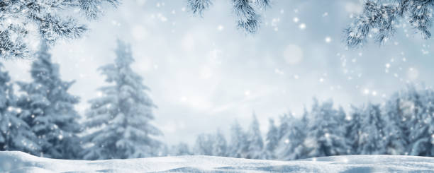 snowy idyllic winter landscape panorama - snowflake background stock pictures, royalty-free photos & images