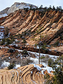 Snowy landscape and swirling sandstone red rocks and cliffs along the scenic road near Checkerboard Mesa in Zion National Park Utah