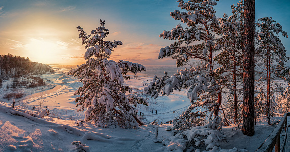 Snowy landscape at sunset, frozen and covered in snow trees in winter