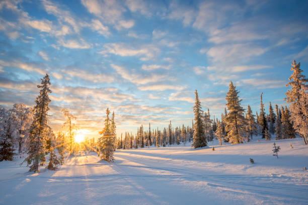 Verschneite Landschaft bei Sonnenuntergang, gefrorene Bäume im Winter in Saariselkä, Lappland, Finnland – Foto