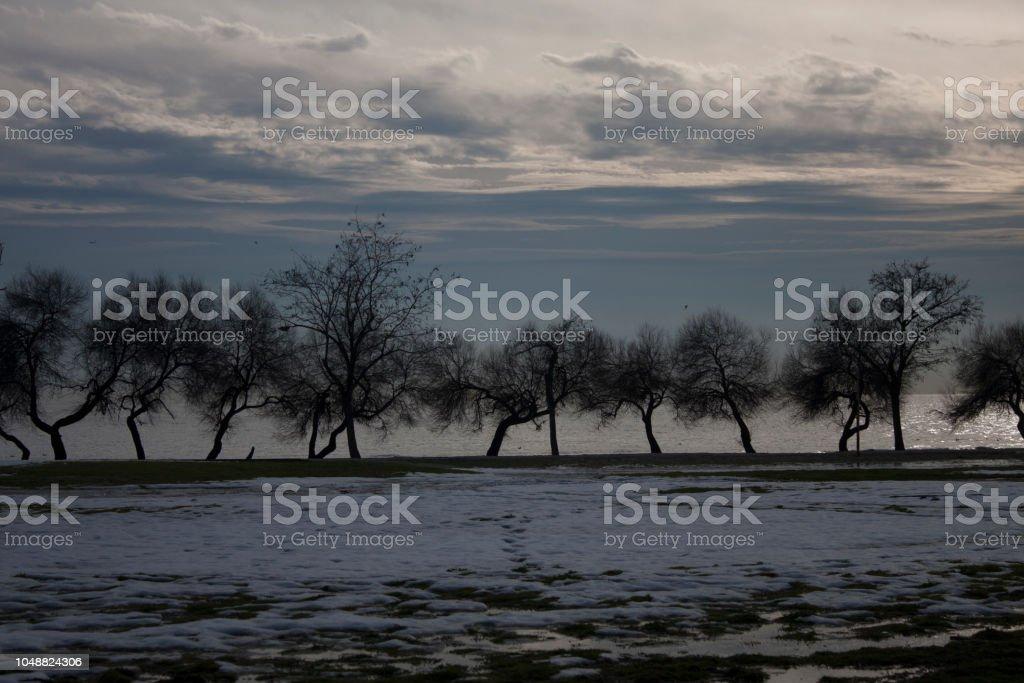 Snowy landscape Bacground stock photo