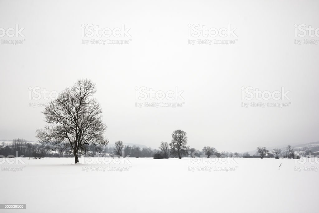 Snowy landscape in European countryside stock photo