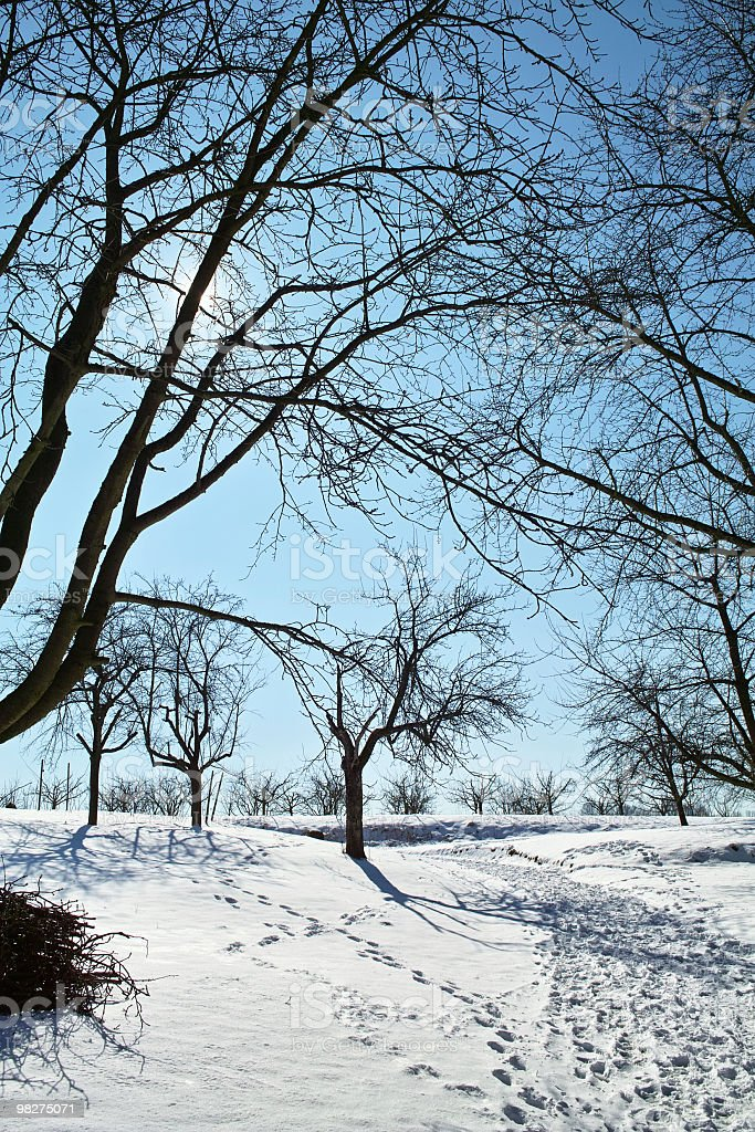 snowy landscape in front of blue sky with footprints royalty-free stock photo