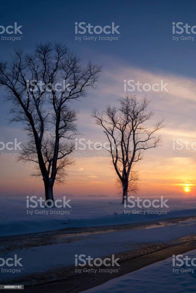 Snowy landscape in the Alblasserwaard stock photo