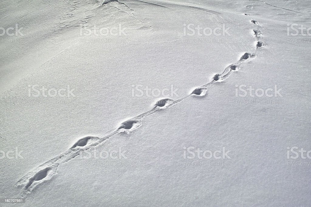 snowy landscape with footprint royalty-free stock photo