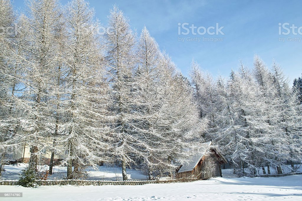 snowy landscape with small house royalty-free stock photo