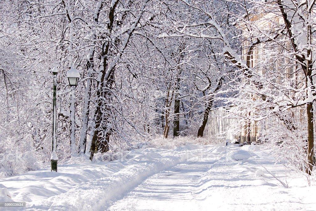 Snowy Lazienki park, Warsaw, Poland stock photo
