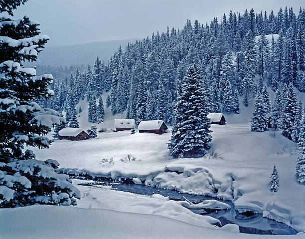 snowy log cabins in ethereal moonlight - western town stock photos and pictures