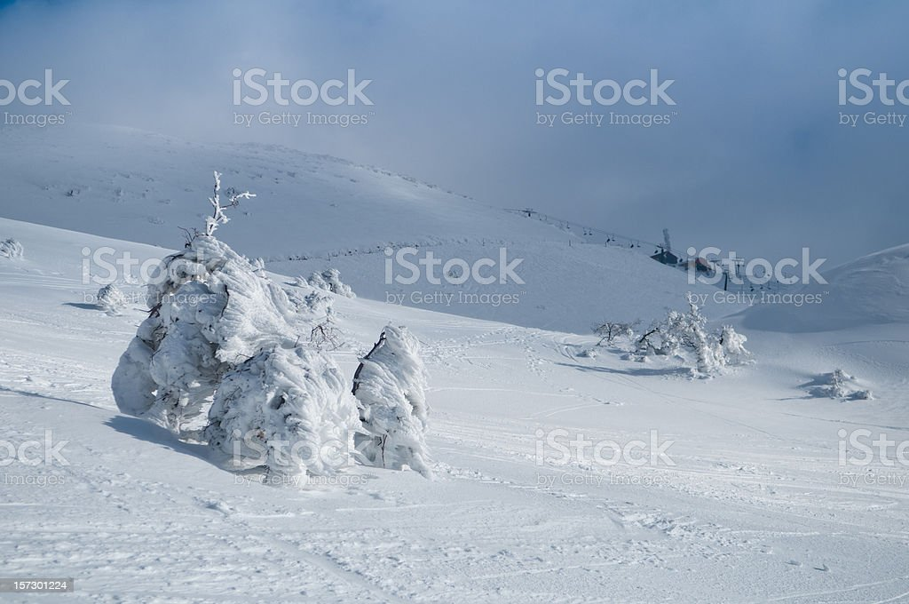 snowy mount Hermon, Israel royalty-free stock photo
