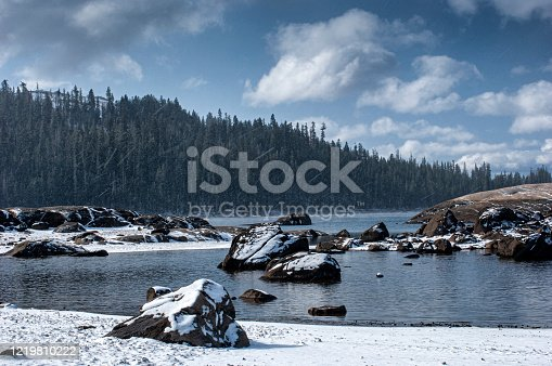 Snowy Sierra Nevada mountain lake surrounded by conifer trees, under a snowy cloudy sky  Taken in Lake Alpine, California, USA.