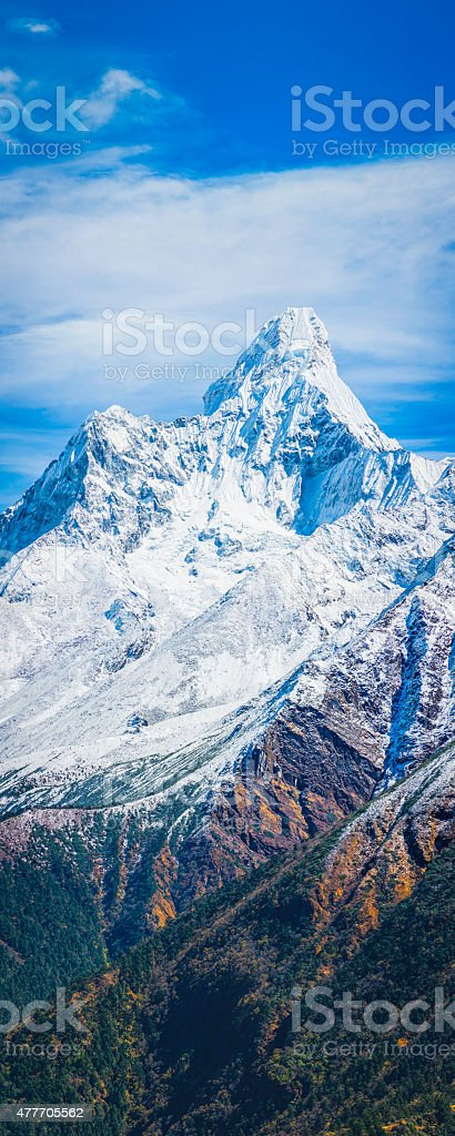 Snowy mountain peak soaring over forest ravines banner panorama Himalayas stock photo