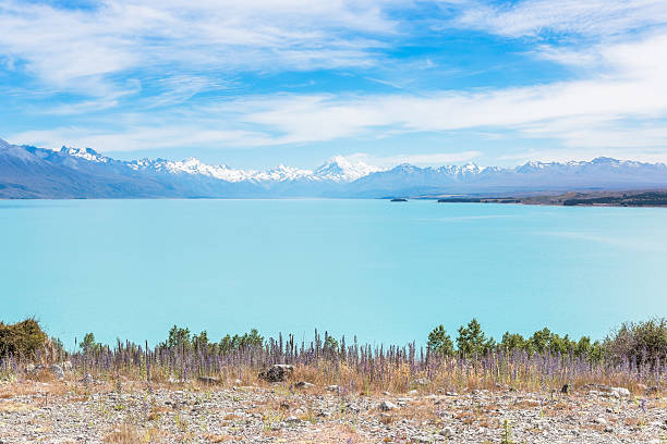 Snowy mountain peaks over a turquoise lake stock photo