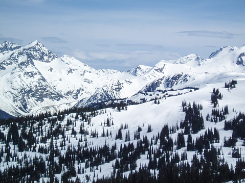 Snowy mountain top back country - Whister, Canada