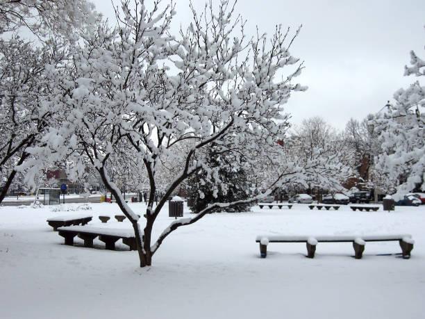 Parc de quartier Harfang - Photo