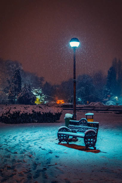 Snowy night in the park with a bench near a street light covered with snow stock photo