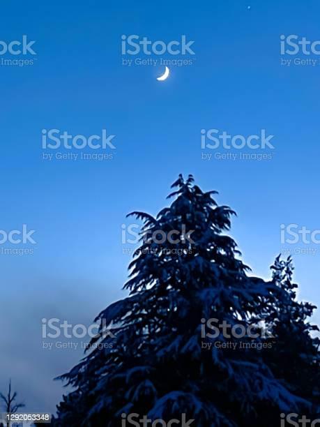 Photo of Snowy night