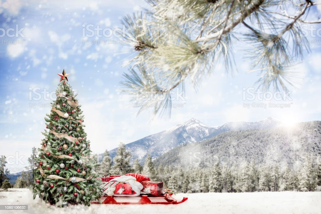 Snowing Christmas Scene.Snowy Outdoor Christmas Tree Scene In Mountains Stock Photo