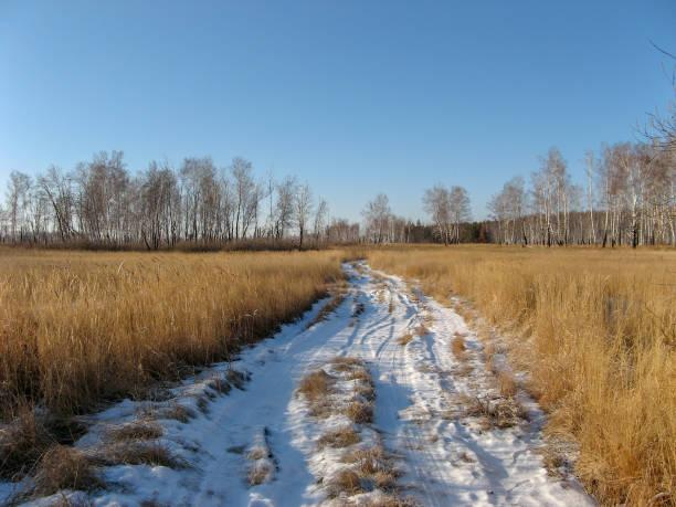 besneeuwde pad van tarweveld in siberië - siberië stockfoto's en -beelden