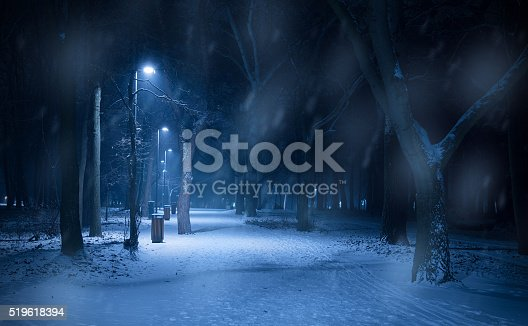 istock snowy path in the forest at night 519618394