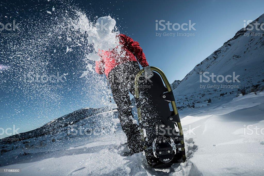 snowy stock photo
