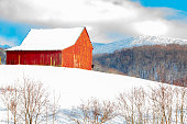 Snowy red barn and horse