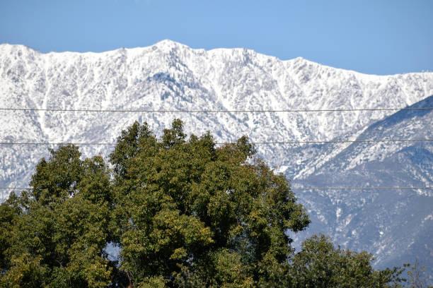 A Snowy Ridge in San Bernardino County stock photo