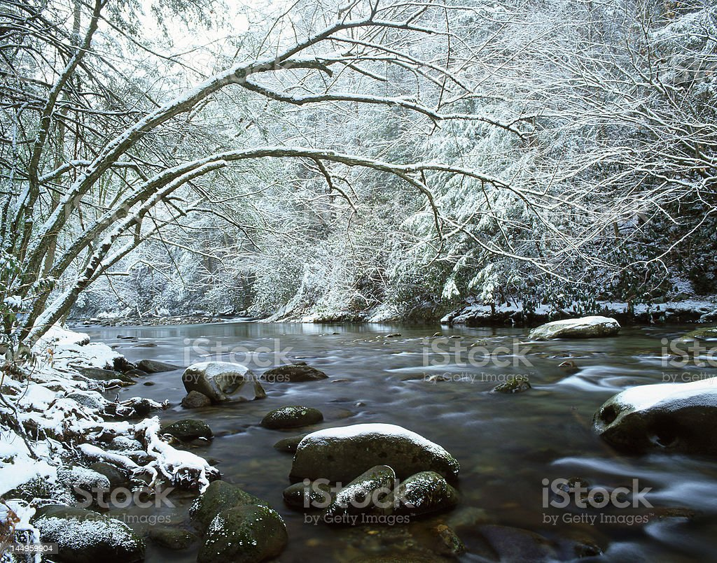 Snowy River royalty-free stock photo