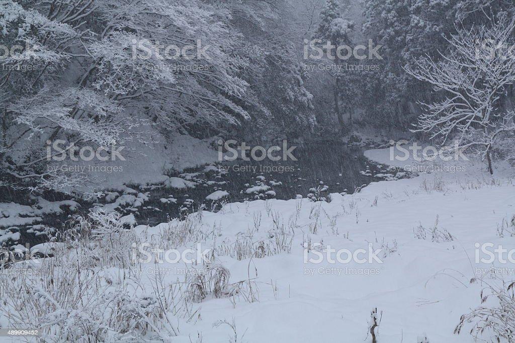 スノーイー川岸 ロイヤリティフリーストックフォト