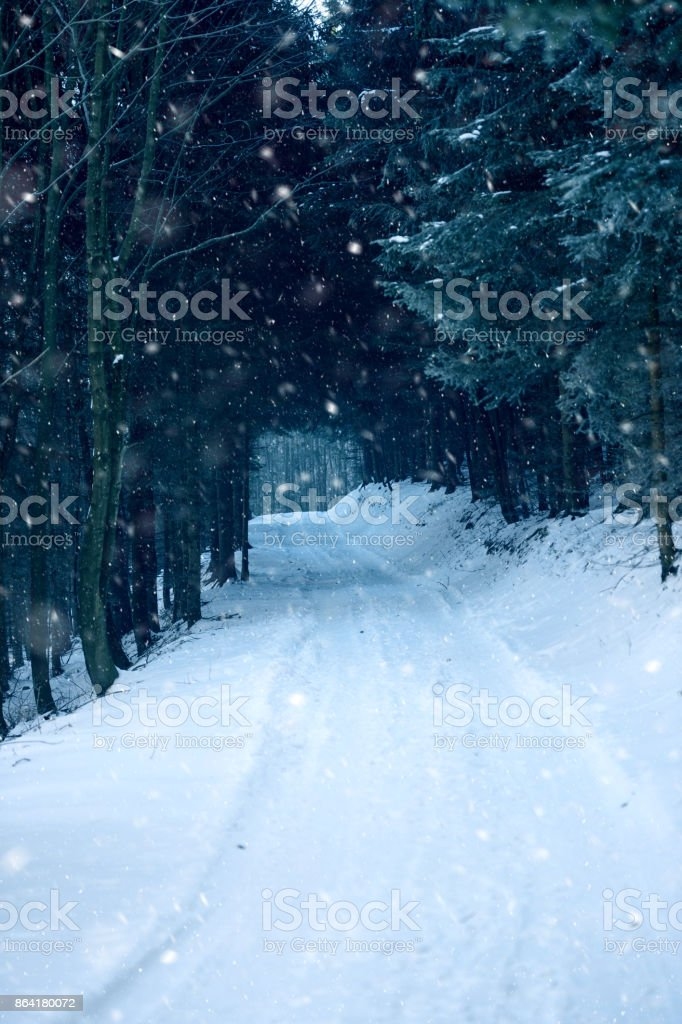 Snowy road in winter royalty-free stock photo