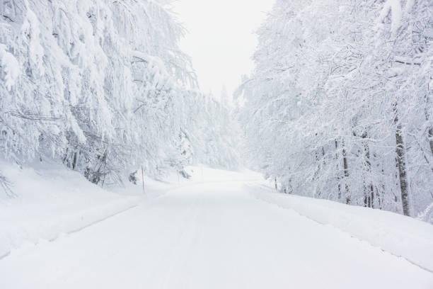 camino cubierto de nieve - nieve fotografías e imágenes de stock
