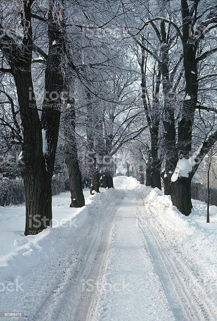 Snowy road royalty-free stock photo
