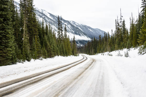 Snowy road through pine woodland in the mountains Icy Road through a snowy pine forest in the Canadian Rockies on a cloudy winter day. Concept of dangerous driving conditions. British Columbia, Canada. emerald lake stock pictures, royalty-free photos & images
