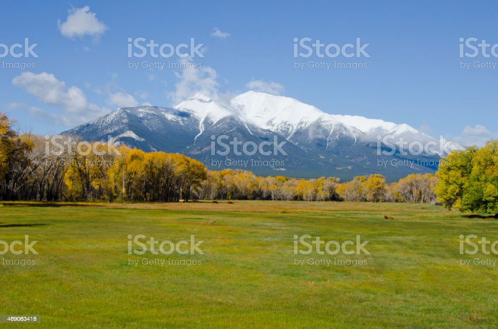 Snowy Rocky Mountains in the distance above a green field stock photo