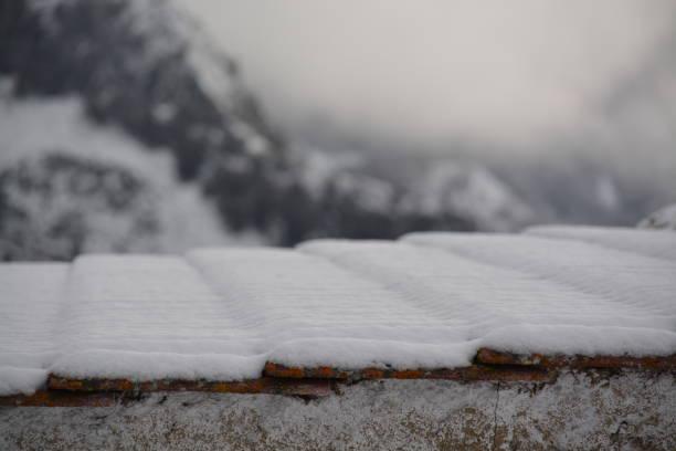 Tejado nevado - foto de stock