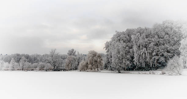 Verschneite Landschaft im Stadtpark von Bad Schwartau – Foto