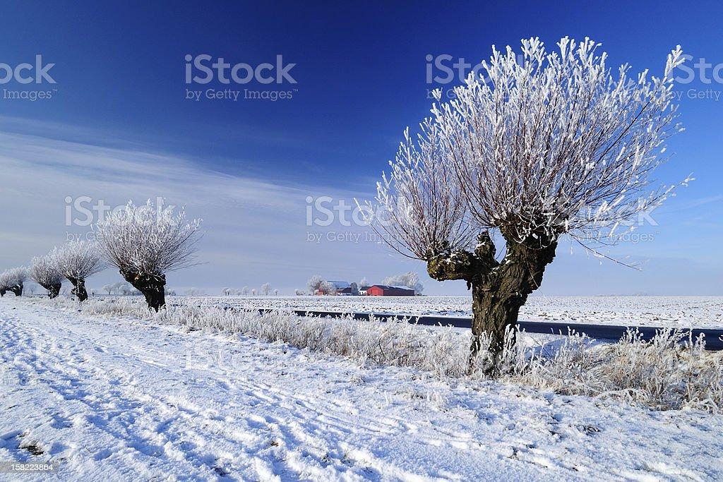 Snowy Skane landscape 1 stock photo