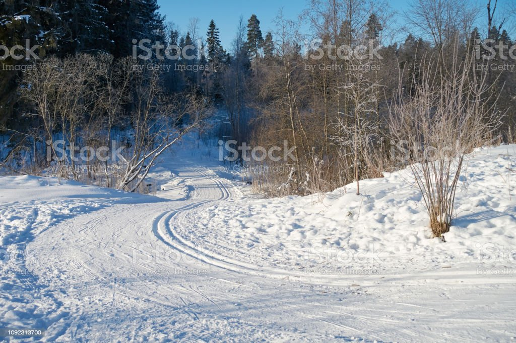 Snowy skiing way in wintry forest stock photo