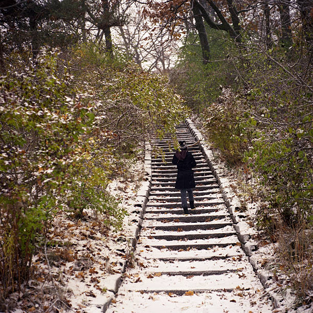 Snowy Steps stock photo