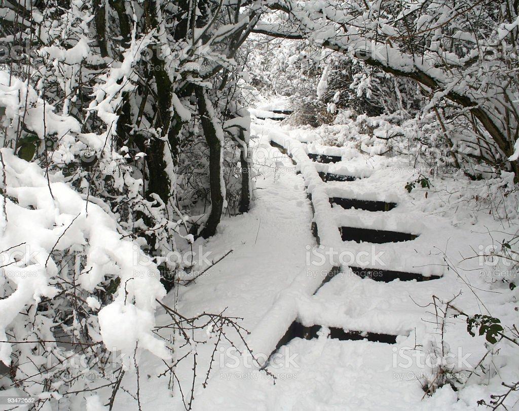 Snowy steps royalty-free stock photo