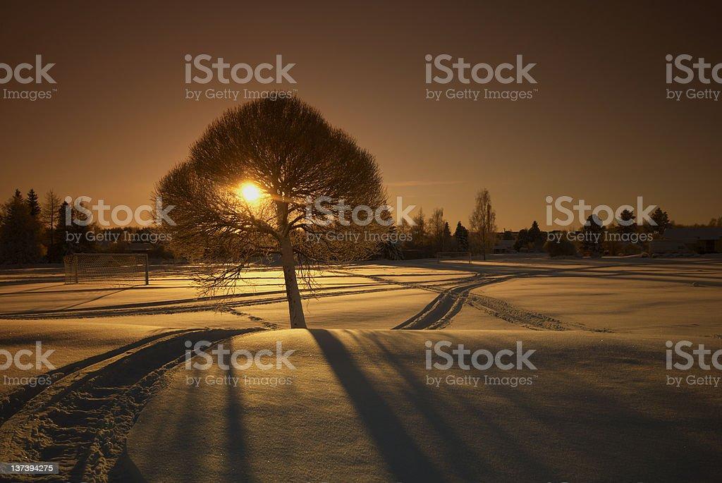 Snowy sunset royalty-free stock photo